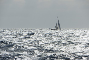 Crossing Ocean - FreeSail Christian Bonvini Traversata Atlantica